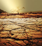 Drought land Royalty Free Stock Images