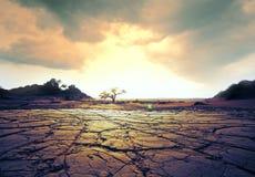 Drought land Royalty Free Stock Photo