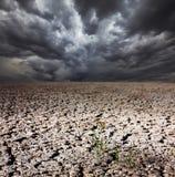 Drought land Royalty Free Stock Image