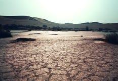 Drought Royalty Free Stock Photo