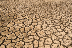 Drought land. Climate change, the ground is dry, drought, cracked ground royalty free stock image