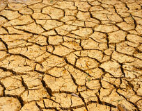 Drought land, climate change, hot summer. Hay on drought land, amazing arid and cracked ground, climate change made agriculture plantation have to reduct, in Royalty Free Stock Photos