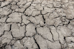 Drought land, cracked ground Stock Images