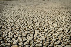 Drought land dry and cracked soil in arid season Stock Images