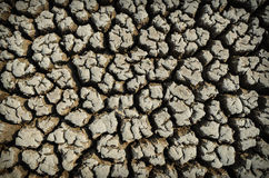 Drought land dry and cracked soil in arid season Stock Photography