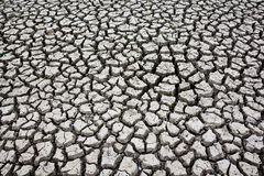 Drought land groud texture background Royalty Free Stock Photo