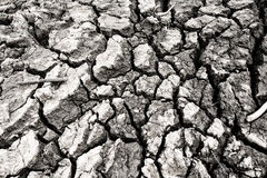 Drought land so long waterless Royalty Free Stock Images