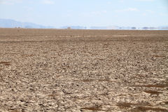 Drought land and mirage Royalty Free Stock Photography