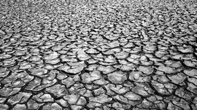 Drought land, warming global Stock Photography