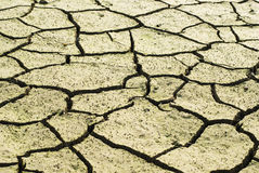 Drought land was cracked. Royalty Free Stock Photography