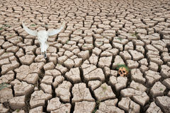 Drought land world crisis Stock Photos