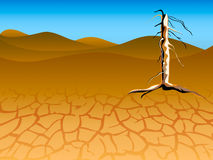 Drought landscape Royalty Free Stock Images