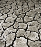 Drought Landscape. Drought stricken landscape used for background Royalty Free Stock Photography