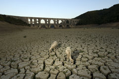Drought and Maglova Aqueduct, Turkey Royalty Free Stock Image
