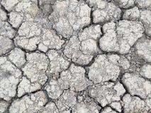 The drought Stock Photos