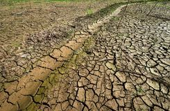 Drought parched ground. Stock Photo