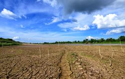 Drought parched ground. Dry river on drought parched ground royalty free stock photography