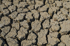 Drought parched soil Royalty Free Stock Photos