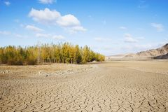 Drought period of rivers, and woods Royalty Free Stock Photography