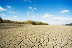 Drought period of rivers, and woods Royalty Free Stock Photo