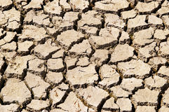 Drought Relief. Dry ground texture Royalty Free Stock Images