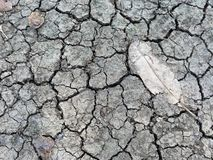 Drought soil Stock Images