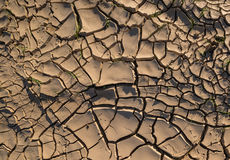 Drought soil Royalty Free Stock Image