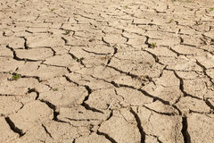 Drought-stricken cracked soil Stock Images
