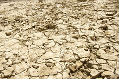 Drought Stricken River Bed Texture Royalty Free Stock Photography