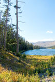 Drought stricken Sylvan Lake on Sylvan Pass on the highway to the east entrance of Yellowstone National Park in Wyoming US of A Royalty Free Stock Image