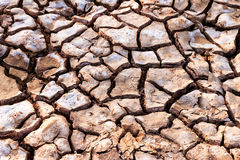 Drought. On summer in Thailand Royalty Free Stock Photography