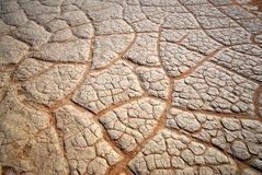 Drought texture. A cracked soil creating a drought texture stock images