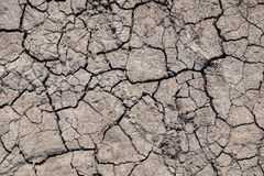 Drought Texture. Asia Drought Texture uploaded 2017 Royalty Free Stock Image