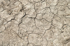 Drought. Very dry cracked soil as a concept for droughts Royalty Free Stock Photo