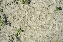 Drought. Water deficiency drought earth background royalty free stock photos
