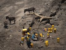 Drought, yellow water cans and donkeys stock image