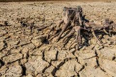 Droughted lake Vogrscek Royalty Free Stock Photos