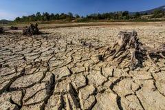 Droughted lake Vogrscek Royalty Free Stock Photo
