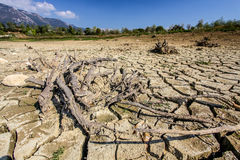 Droughted lake Vogrscek Stock Photos