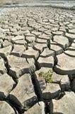droughty smutsa Royaltyfri Foto