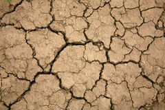 Droughty soil close up Stock Photography