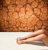 Droughty summer Stock Photos