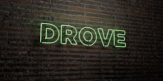 DROVE -Realistic Neon Sign on Brick Wall background - 3D rendered royalty free stock image Royalty Free Stock Image