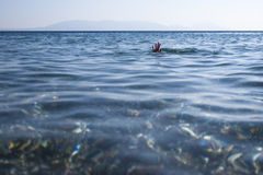 Drowned Royalty Free Stock Images