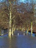 A drowned footpath during floods. A tree lined path under flood water Royalty Free Stock Photo