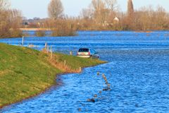 Drowned fore-lands and roads near Zutphen, the Netherlands royalty free stock photography