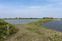 Drowned Land of Saeftinghe. Landscape at Drowned Land of Saeftinghe royalty free stock images