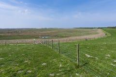 Drowned Land of Saeftinghe. Landscape at Drowned Land of Saeftinghe stock photos