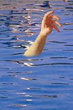 Drowning arm in swimming pool Stock Image