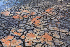 Dürren-Regen fällt auf trockene ausgetrocknete gebrochene Erde Stockbilder